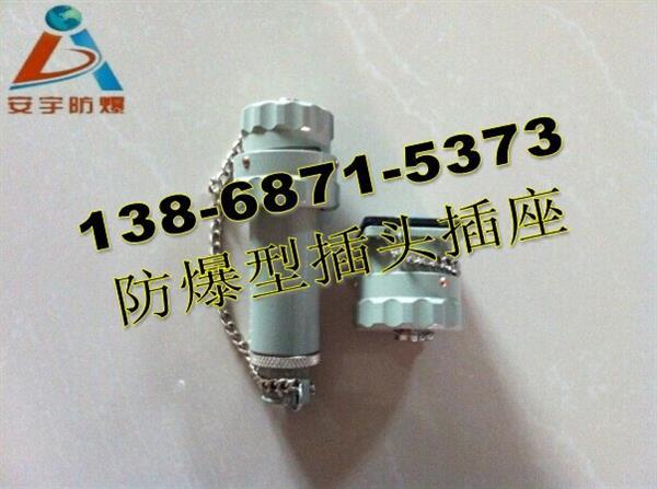 15YT-4K/GZ-4J 三相4级防爆插头插座/电流15A固定式